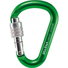 Карабін Salewa HMS Screw G2 Medium Green
